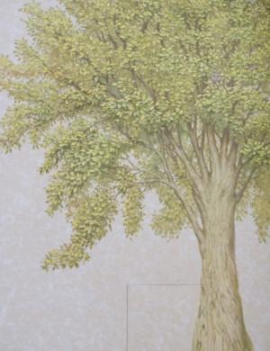 птичье-дерево-обложка